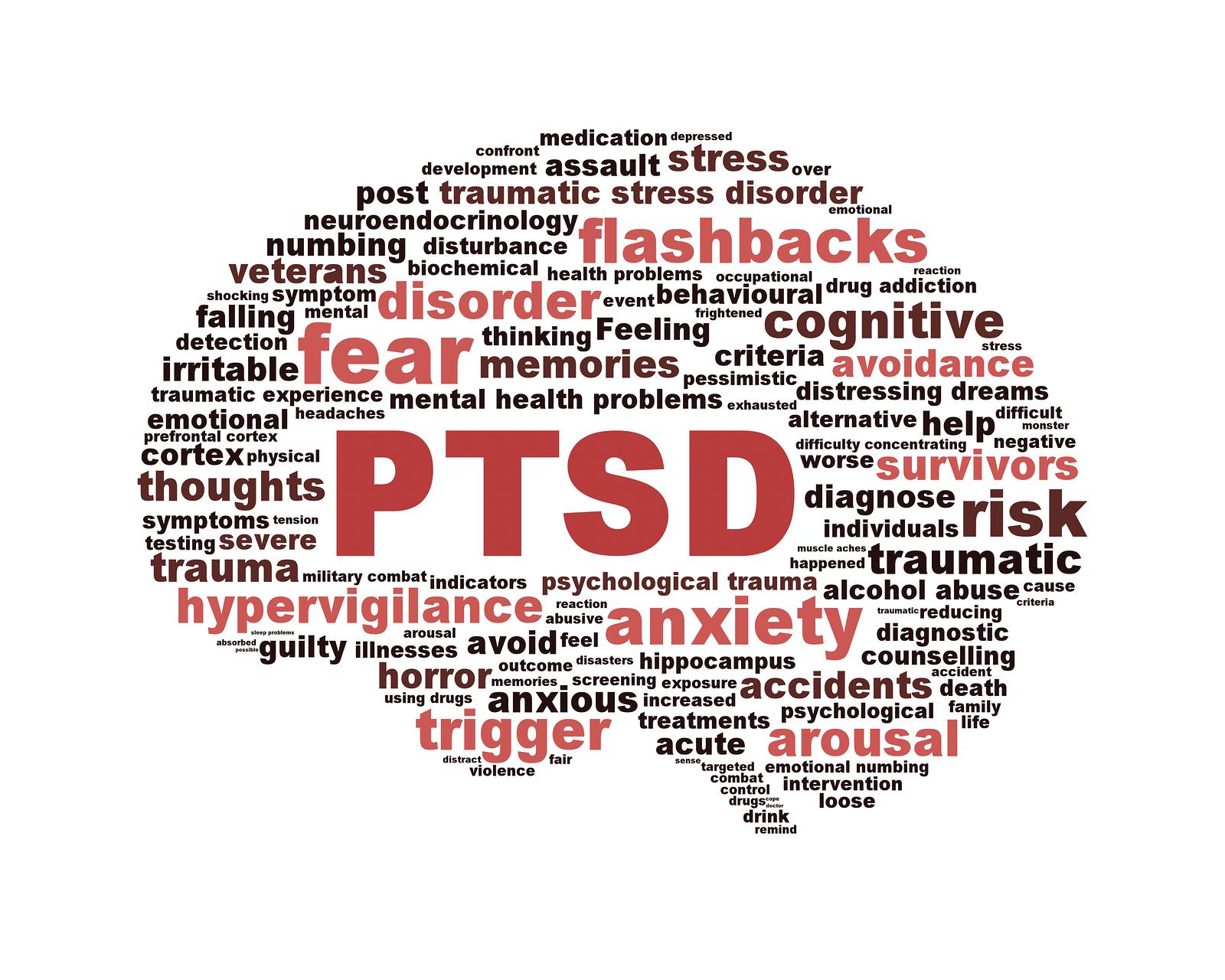 Image result for trauma informed care